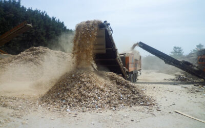 Wood Waste Management Facilities Visit