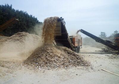 Wood Waste Management Facilities Visit